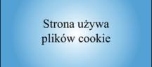 Pliki cookie w naszej stronie